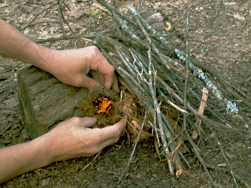 lean to campfire for survival